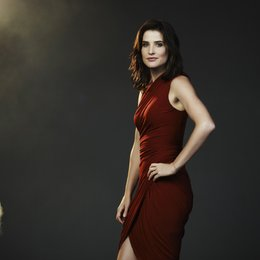 How I Met Your Mother (9. Staffel, 24 Folgen) / Cobie Smulders Poster