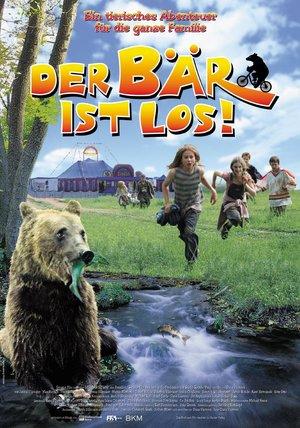 Der Bär Film Stream