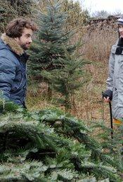 Weihnachten für Einsteiger