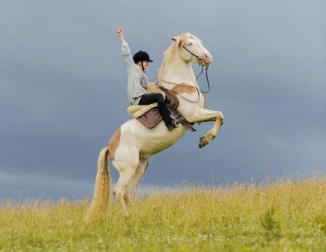 Wendy hat die Zügel fest im Griff - auf in die Freiheit! © Sony Pictures