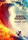 Poster Animal Kingdom Staffel 4