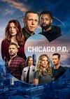 Poster Chicago P.D. Staffel 8