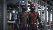 """""""Ant-Man""""-Reihenfolge:  So fügt ihr die Filme richtig ins MCU ein"""