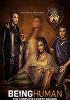 Poster Being Human Staffel 4