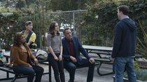 """Läuft """"Single Parents"""" auf Netflix? Die Serie im Stream"""
