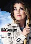 Poster Grey's Anatomy Staffel 12