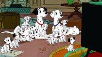 """""""101 Dalmatiner""""-Namen: So heißen die gepunkteten Vierbeiner"""