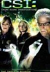 Poster CSI - Den Tätern auf der Spur Staffel 12