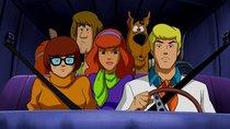 """Scooby Doo""-Namen:  Diese Figuren gehören zum Team"