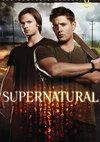 Poster Supernatural Staffel 8