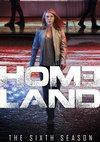 Poster Homeland Staffel 6
