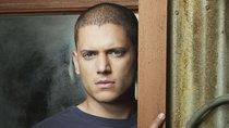 """""""Prison Break"""" Staffel 6 Ist eine neue Staffel in Aussicht?"""