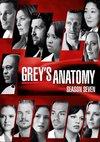 Poster Grey's Anatomy Staffel 7