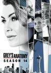 Poster Grey's Anatomy Staffel 14