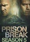 Poster Prison Break Staffel 5