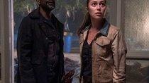 """""""Fear the Walking Dead"""" Staffel 7: Wann kommt die Fortsetzung?"""