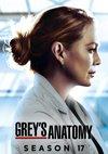 Poster Grey's Anatomy Staffel 17