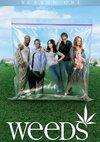 Poster Weeds - Kleine Deals unter Nachbarn Staffel 1