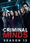 Poster Criminal Minds Staffel 13