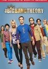 Poster The Big Bang Theory Staffel 8