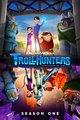Poster Trolljäger