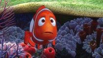 """""""Findet Nemo""""-Namen: Das sind die Fische aus dem Film"""