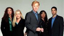"""""""CSI: Miami"""" auf Netflix:  Läuft die Krimiserie dort im Stream?"""