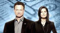 """""""CSI: New York"""" auf Netflix: Läuft die Serie dort im Stream?"""