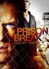 Poster Prison Break Staffel 3
