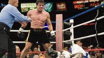Rocky Balboa-Zitate: Das sind die besten Sprüche des Kult-Boxers