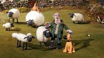 """""""Shaun das Schaf""""-Namen: Das sind die Knetfiguren mit Eigenschaften"""