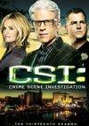 Poster CSI - Den Tätern auf der Spur Staffel 13