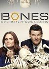 Poster Bones - Die Knochenjägerin Staffel 10