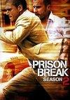 Poster Prison Break Staffel 2