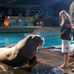 50 erste Dates / Drew Barrymore / Adam Sandler