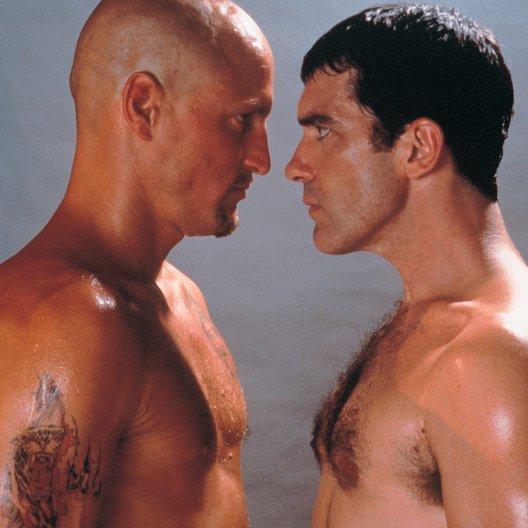 Knocked Out - Eine schlagkräftige Freundschaft / Antonio Banderas / Woody Harrelson Poster