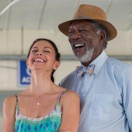 Mein Freund, der Delfin 2 / Mein Freund der Delfin 2 / Dolphin Tale 2 / Ashley Judd / Morgan Freeman Poster