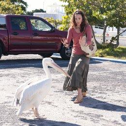 Mein Freund, der Delfin / Ashley Judd Poster