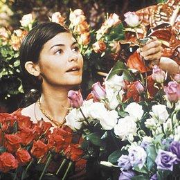 Wahnsinnig verliebt / Audrey Tautou