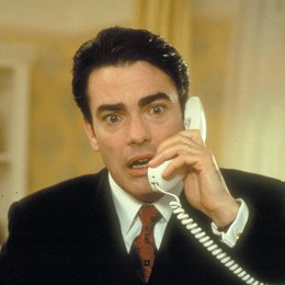 Agent Null Null Nix / Peter Gallagher Poster