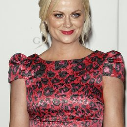 Amy Poehler / 63rd Annual Primetime Emmy Awards Poster