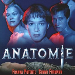 Anatomie Poster