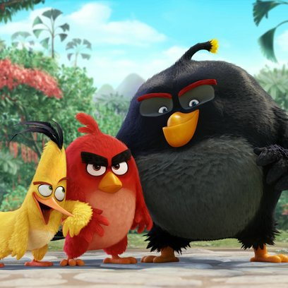 Angry Birds - Der Film / Angry Birds Poster