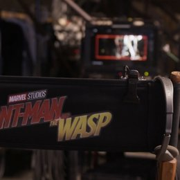 ant-man-and-the-wasp-©-disney-7 Poster