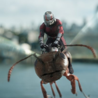Marvel Studios ANT-MAN AND THE WASP  Ant-Man/Scott Lang (Paul Rudd)  Photo: Film Frame  ©Marvel Studios 2018 Poster