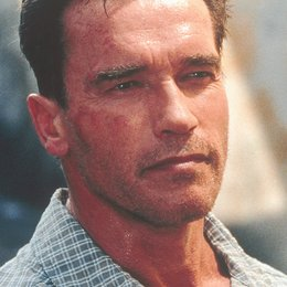 Collateral Damage / Schwarzenegger, Arnold Poster