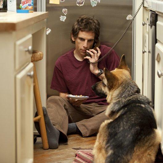 Greenberg / Ben Stiller