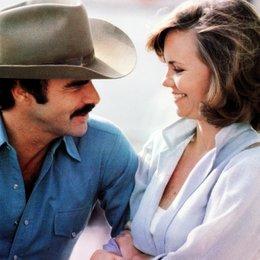 ausgekochtes Schlitzohr ist wieder auf Achse, Ein / Sally Field / Burt Reynolds Poster