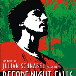 Before Night Falls Poster