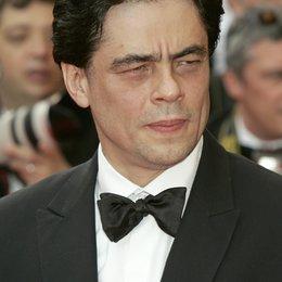 del Toro, Benicio / 61. Filmfestival Cannes 2008 Poster